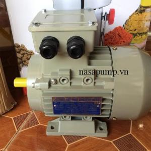 Động cơ điện Guanglu Y3 - 355M - 4