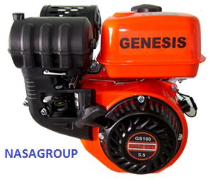 Động cơ xăng Genesis GS 160